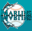 Florida Marlins | E-Stores by Zome