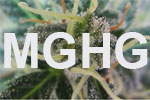 Marijuana Growers Helping Growers | E-Stores by Zome